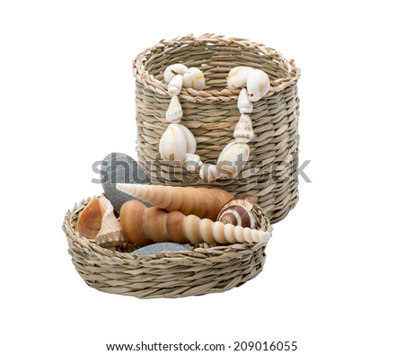 The composition made of shells isolated on white - stock photo