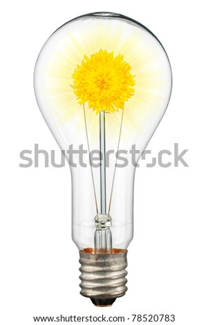 The concept of ecological illumination. A dandelion with shining in a lamp. Isolated on white [with clipping path]. - stock photo