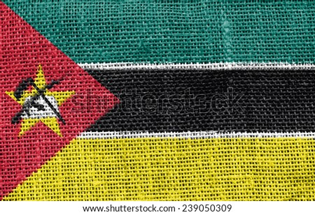 The concept of national flag on canvas background: Mozambique - stock photo