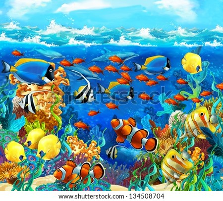 Картинка дно морское