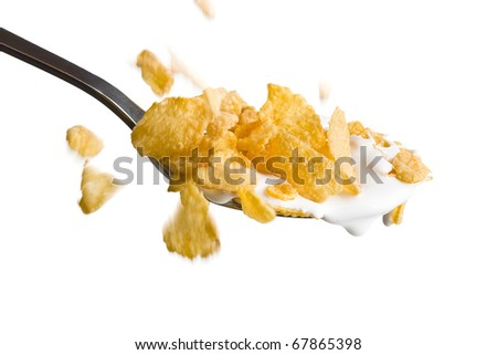 the corn flakes falling in the spoon with milk - stock photo