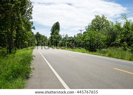 The country road surrounded by tropical forest.