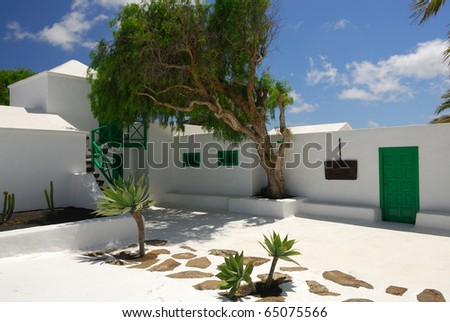 The courtyard in the spanish villa with a green tree