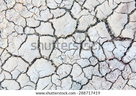 The cracked ground. - stock photo