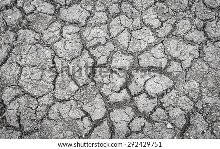 The cracked ground in black and white