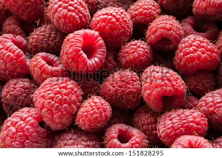 The crop of juicy ripe raspberry close-up - stock photo