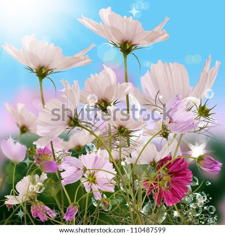 The decorative flowers upon solar green meadow - stock photo