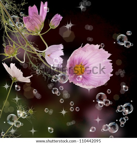 The decorative garden spring flowers - stock photo