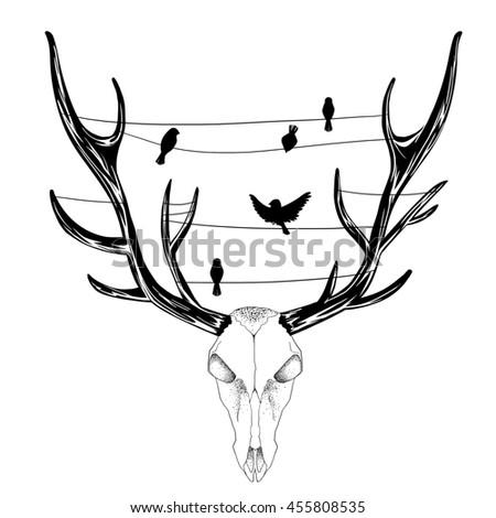 The Deer Skull. Sketch Artwork, Creative Idea, Innovative art, Concept Illustration, Tattoo Design.  - stock photo