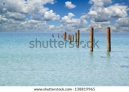 The destroyed elling on the seashore - stock photo