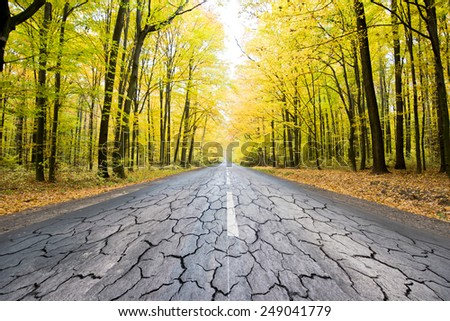 the destroyed road in golden autumn forest. - stock photo