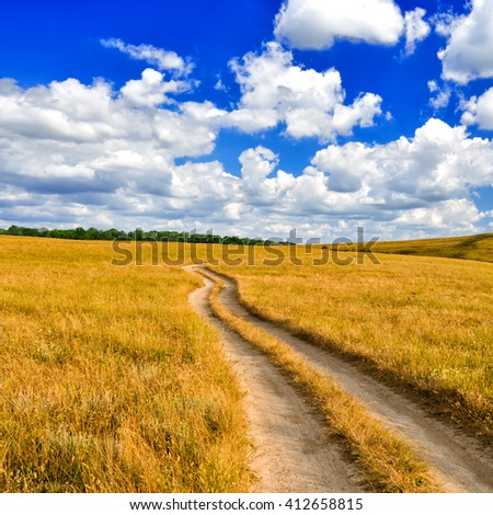 The dirt road leaves for the horizon in the picturesque steppe against the blue sky with white clouds - stock photo