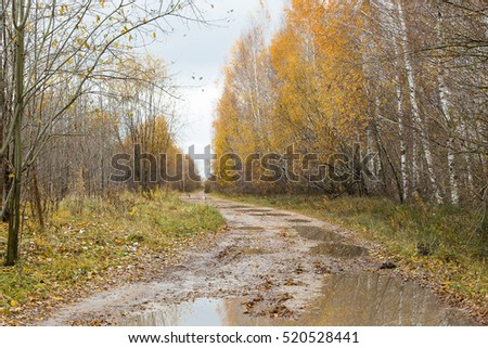 The dirt road through the autumn wood