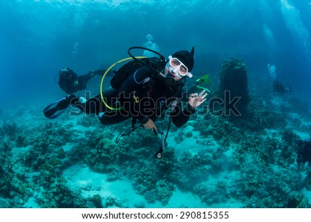 The diver take photo of octopus at the bottom of the Red Sea - stock photo