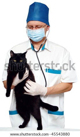 The doctor listens to the heart of the cat stethoscope. Isolated on white.