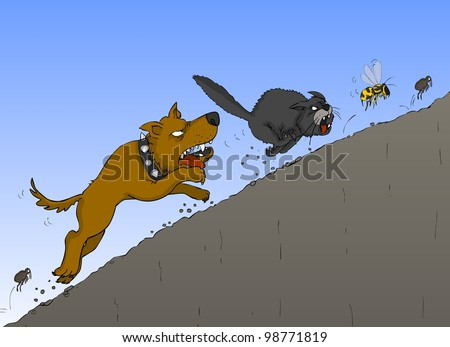The dog chases the cat, the cat wasp, wasp beetle - stock photo