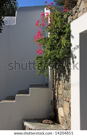 The doorstep of a typical greek island house in Mykonos island, with nice Bougainvillea flowers - stock photo