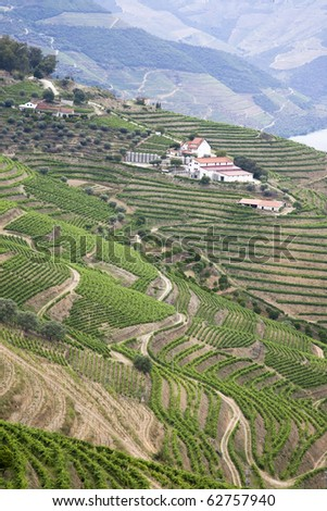 The douro vineyards, Port wine farm with the UNESCO world heritage slopes.Porto, Portugal - stock photo