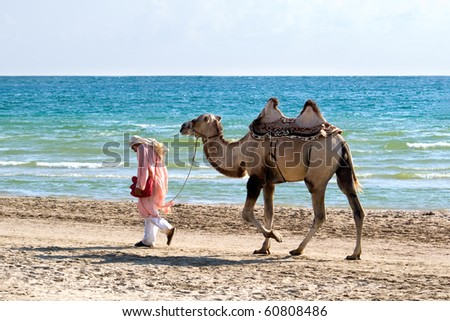 The drover with a camel go on seacoast