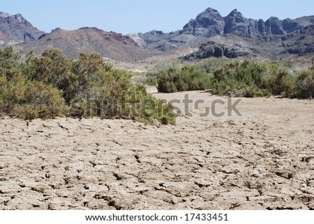 The dry land in El Tecolote area, Mexico.
