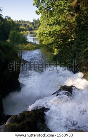 The Duschutes River fed Lower Tumwater falls empties into Capitol Lake in Olympia the Capital City of Washington State. This river was the water source for the famous Olympia Brewing Company. - stock photo
