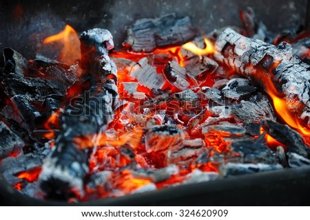 the dying fire, burning firewood - stock photo