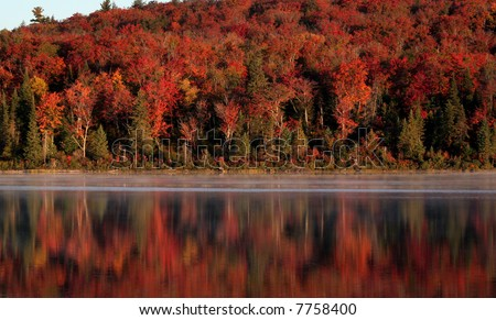The early morning light shining on the beautiful autumn colors reflecting on a lake of Algonquin Park in Ontario, Canada.