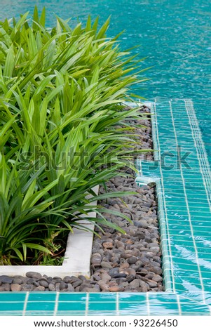The edge of a swimming pool with clear crisp blue water. - stock photo