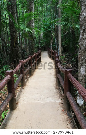 The educational nature trails in thailand - stock photo