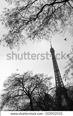 The Eiffel tower in the winter day - stock photo