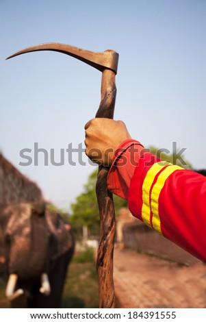 The elephant hook - stock photo