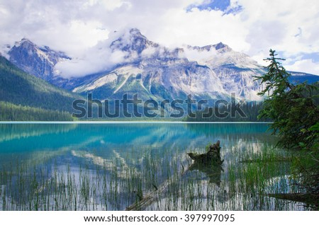 the emerald lake in Yoho National Park, the Canadian Rockies Mountain - stock photo