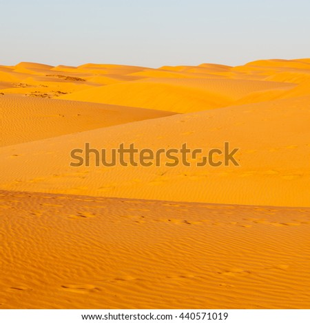the empty quarter  and outdoor  sand  dune in oman old desert rub al khali