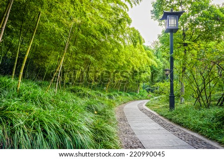 The exterior decoration of Chinese garden in Xingguo temple area - stock photo