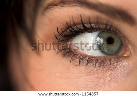 The eye - stock photo