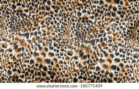 The fabric on striped leopard on background - stock photo