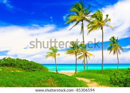The famous beach of Varadero in Cuba - stock photo