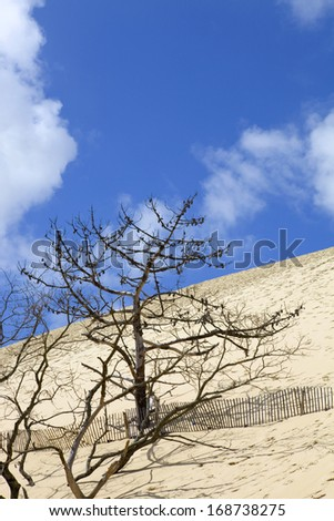 The Famous dune of Pyla fences, the highest sand dune in Europe, in Pyla Sur Mer, France. - stock photo