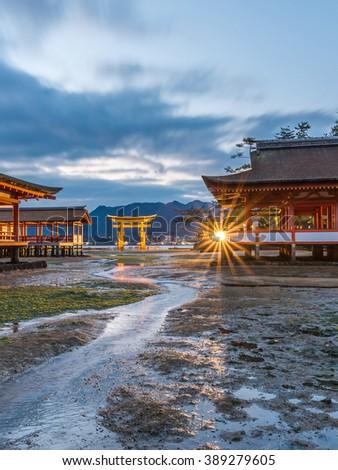 The famous orange floating shinto gate (Torii) and Itsukushima shrine, Miyajima island of Hiroshima prefecture, Japan under Golden Dramatic Twilight Sky at Dusk in Summer Night Low Tide - stock photo