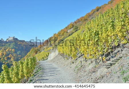 the famous Red Wine Hiking Trail through Vineyard Landscape in Ahr Valley near Bad Neuenahr,Rhineland-Palatinate,Germany - stock photo