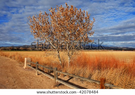 The Farm at Bosque del Apache national wildlife refuge, New Mexico - stock photo