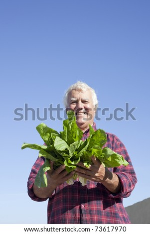 The farmer showing the fresh picked vegetable. - stock photo