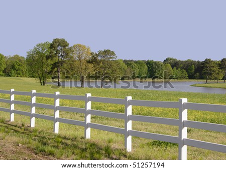 The Fenced in Pasture