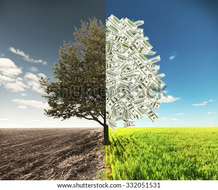 The field and money tree where one side with dollars and another empty - stock photo