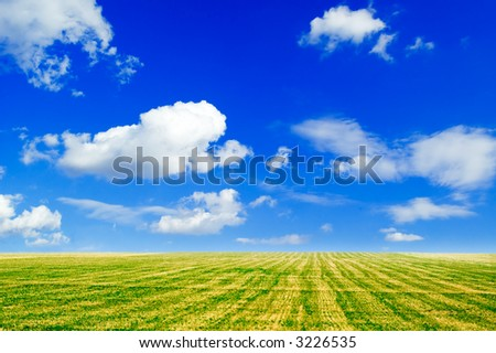 The field and white clouds.