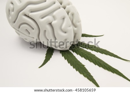 The figure of the human brain lies on a green leaf of hemp. The use of cannabis (Medical marijuana) in neurology or neuroscience (such as for pain relief). Marijuana dependence or addiction. - stock photo