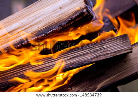 The fire, burning logs