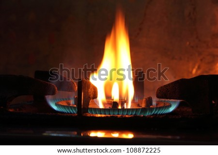 The fire of gas on the kitchen furnace.