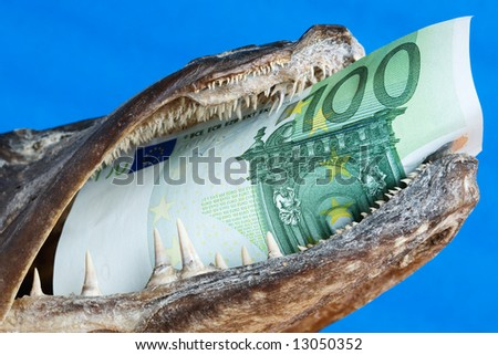 The fish mouth holds euro on blue background - stock photo