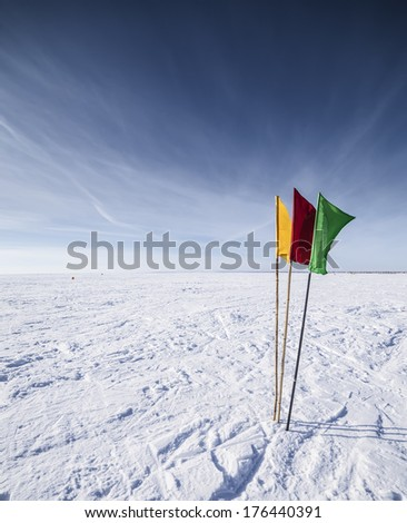 The Flags on the background of winter sky - stock photo